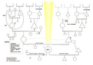 schema-genososiogramme005